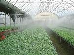 万博体育官网登录注册智能节水灌溉育苗微喷